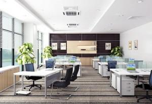 Sử dụng ánh sáng tự nhiên trong thiết kế văn phòng làm việc