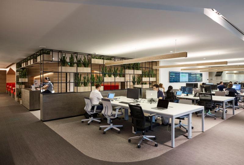 mẫu thiết kế văn phòng công ty BĐS2
